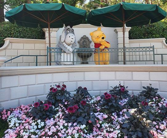 une journée Disney avec winnie et bourriquet